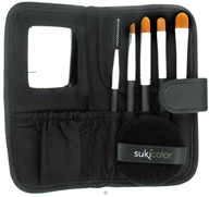 Professional Brush Set with Case and Puff