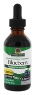 Blueberry Fruit Alcohol-Free Extract (1:1)