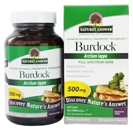 Burdock Root Single Herb Supplement