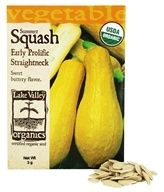 Organic Summer Squash Early Prolific Straighneck Seeds
