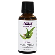 NOW Foods - Eucalyptus Oil - 1 oz.
