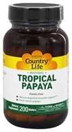 Natural Tropical Papaya