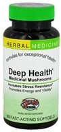 Deep Health Medicinal Mushrooms Alcohol Free