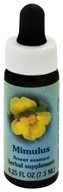 Healing Herbs Dropper Mimulus