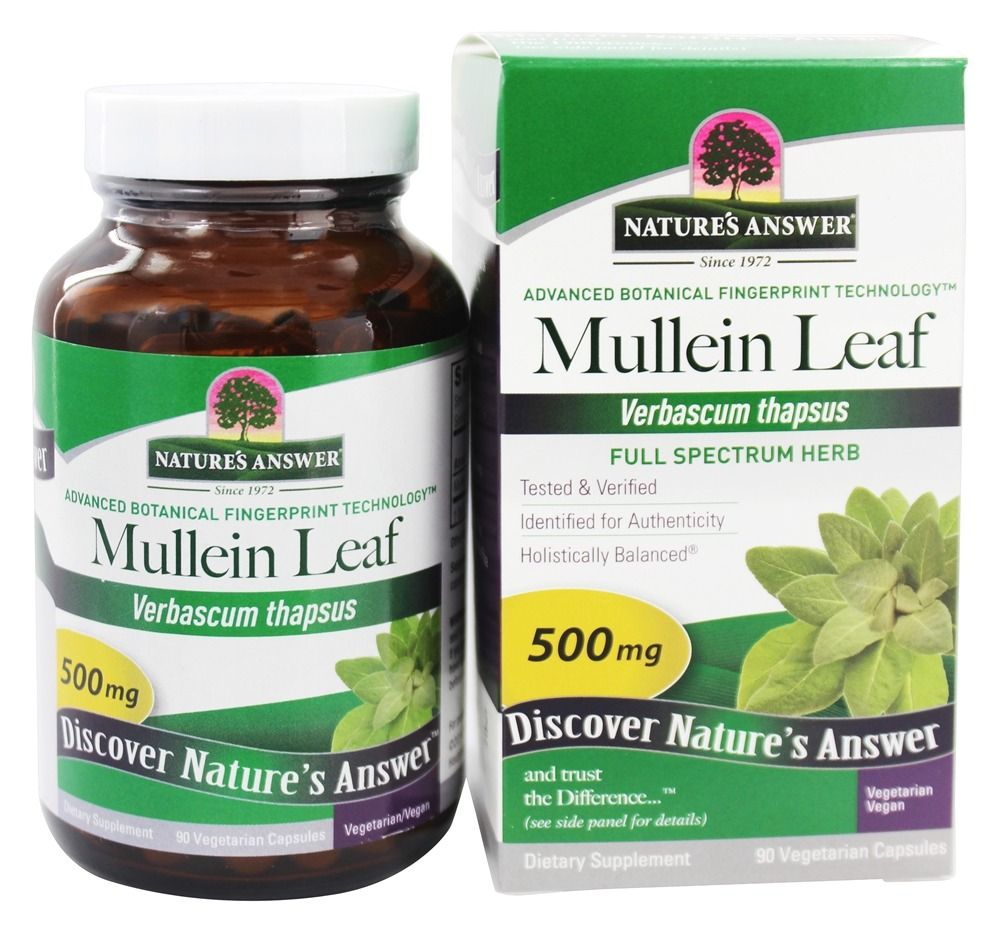 Nature's Answer - Mullein Leaf Single Herb Supplement - 90 Vegetarian Capsules