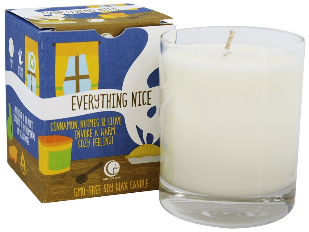 Way Out Wax - Everything Nice GMO-Free Soy Wax Candle Glass Tumbler Cinnamon, Nutmeg, & Clove - 6 oz.