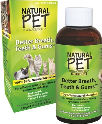 DROPPED: King Bio - Natural Pet Better Breath, Teeth & Gums For Felines Large - 4 oz. CLEARANCE PRICED