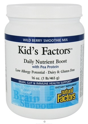 DROPPED: Natural Factors - Kid's Factors Daily Nutrient Boost With Pea Protein Smoothie Mix Wild Berry - 1 lb. CLEARANCE PRICED