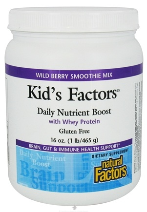 DROPPED: Natural Factors - Kid's Factors Daily Nutrient Boost With Whey Protein Smoothie Mix Wild Berry - 1 lb. CLEARANCE PRICED