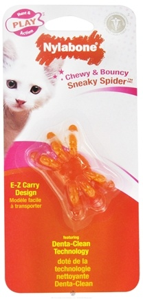 DROPPED: Nylabone - Sneaky Spider Cat Toy