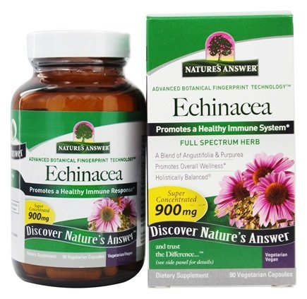 Nature's Answer - Echinacea Root Organic Single Herb Supplement - 90 Vegetarian Capsules