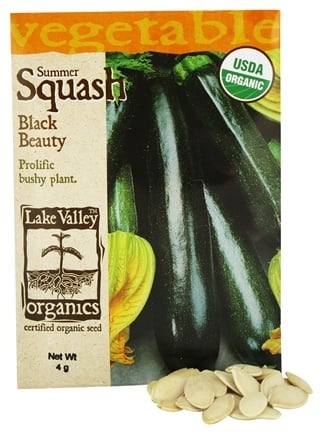 DROPPED: Lake Valley Seed - Organic Summer Squash Black Beauty Seeds - 4 Grams