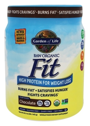 Buy Garden Of Life Raw Fit High Protein For Weight Loss Real Raw Chocolate Cacao 1 Lb At