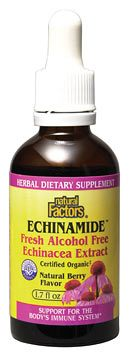 DROPPED: Natural Factors - Echinamide Alcohol-Free Echinacea Extract Natural Berry Flavor - 1 oz.