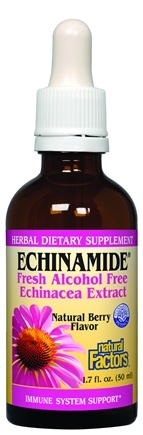 DROPPED: Natural Factors - Echinamide Echinacea Extract Natural Berry Flavor - 1.7 oz.