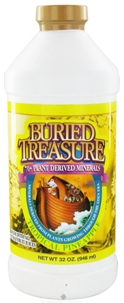DROPPED: Buried Treasure Products - Liquid Plant Derived Minerals Tropical Pineapple - 32 oz.
