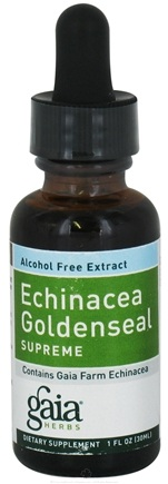 DROPPED: Gaia Herbs - Echinacea Goldenseal Alcohol Free - 1 oz.