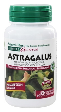 Nature's Plus - Herbal Actives Astragalus 450 mg. - 60 Vegetarian Capsules