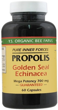 DROPPED: YS Organic Bee Farms - Propolis, Goldenseal & Echinacea - 60 Capsules