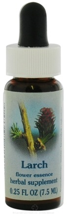 DROPPED: Flower Essence Services - Healing Herbs Dropper Larch - 0.25 oz. CLEARANCED PRICED