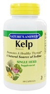 Nature's Answer - Kelp Thallus Single Herb Supplement - 100 Capsules