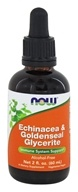 NOW Foods - Echinacea & Goldenseal Glycerite Alcohol-Free - 2 oz.