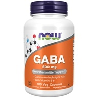 NOW Foods - GABA with Vitamin B-6 500 mg. - 100 Capsules
