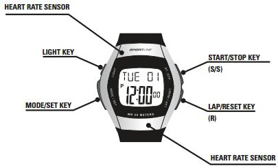 sportline duo heart rate monitor manual