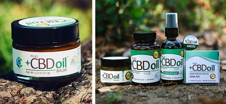 Image result for the plant CDB oil is derived from